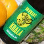 Kufel w dłoń #47 – Koala – Browars